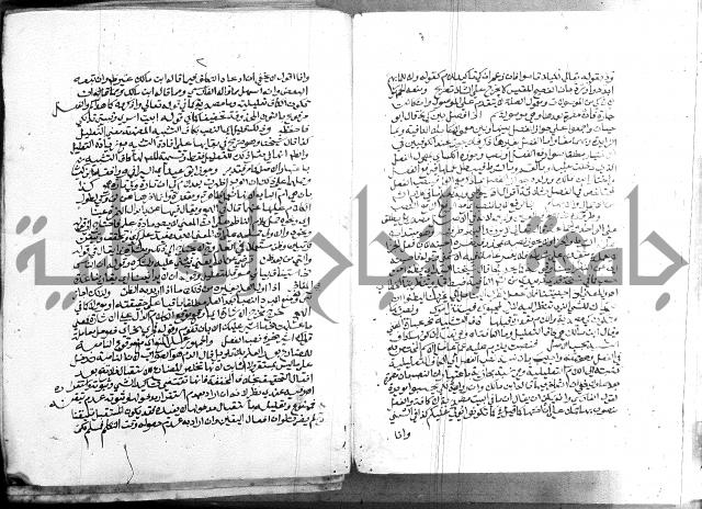 كتاب في اللغة العربية
